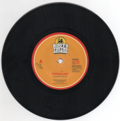 Ashanti Selah - Foreign Land / Dub Land (Roots Youths Records) 7""